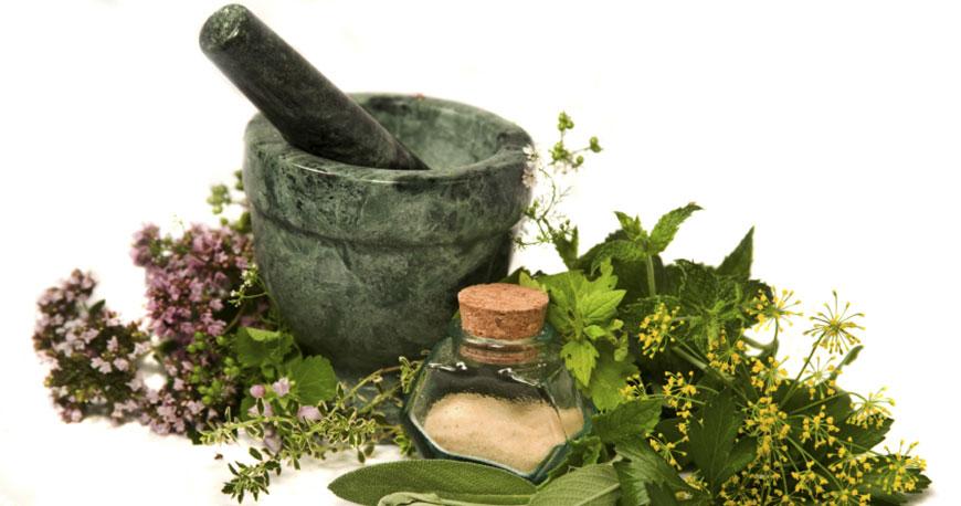 Herbodietética para la fertilidad